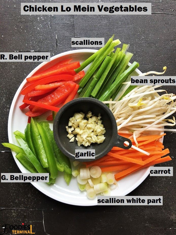 A plateful Lo mein veggies cut into same length