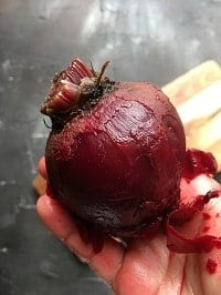 peeling cooked beets